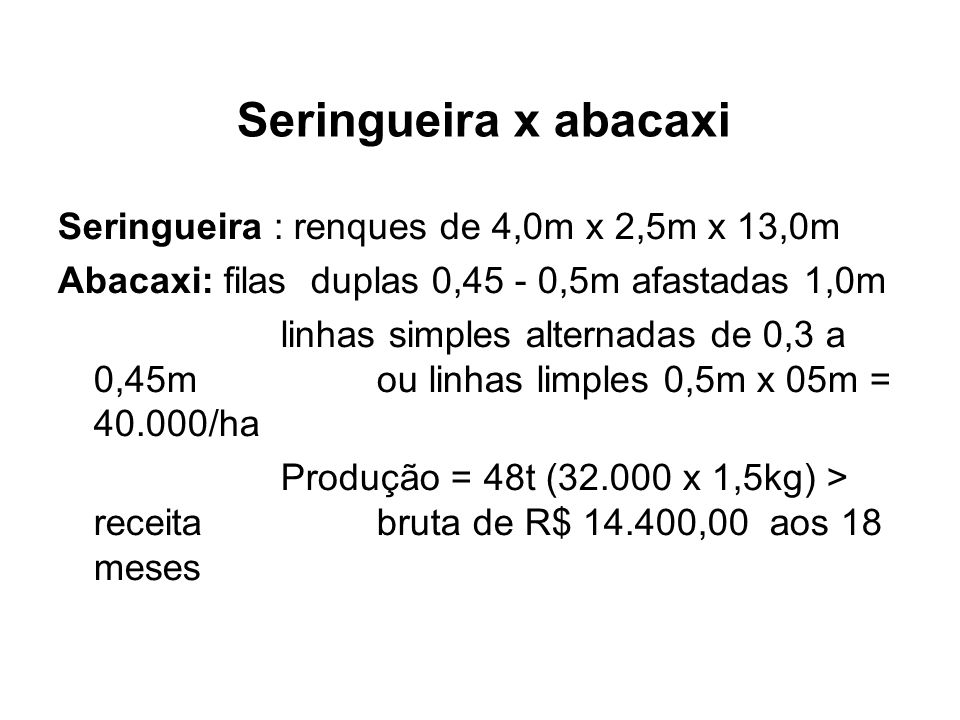 Seringueira x abacaxi Seringueira : renques de 4,0m x 2,5m x 13,0m