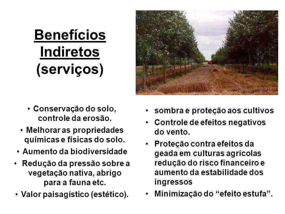 Benefícios Indiretos (serviços)