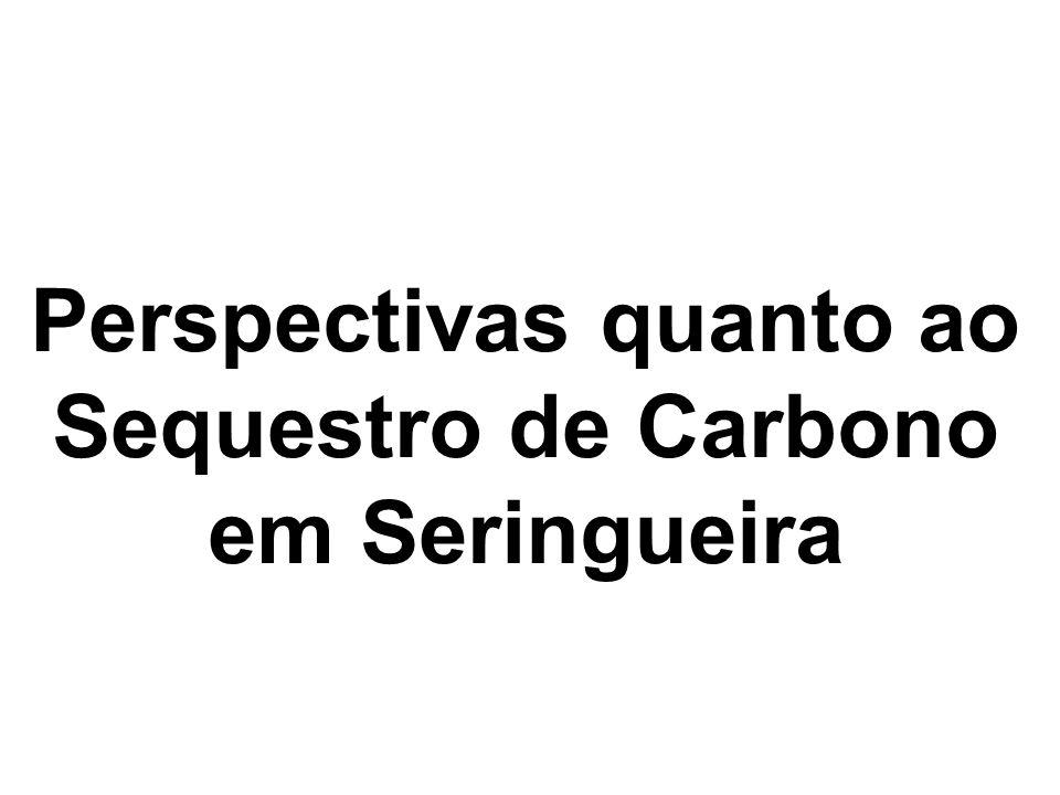 Perspectivas quanto ao Sequestro de Carbono em Seringueira