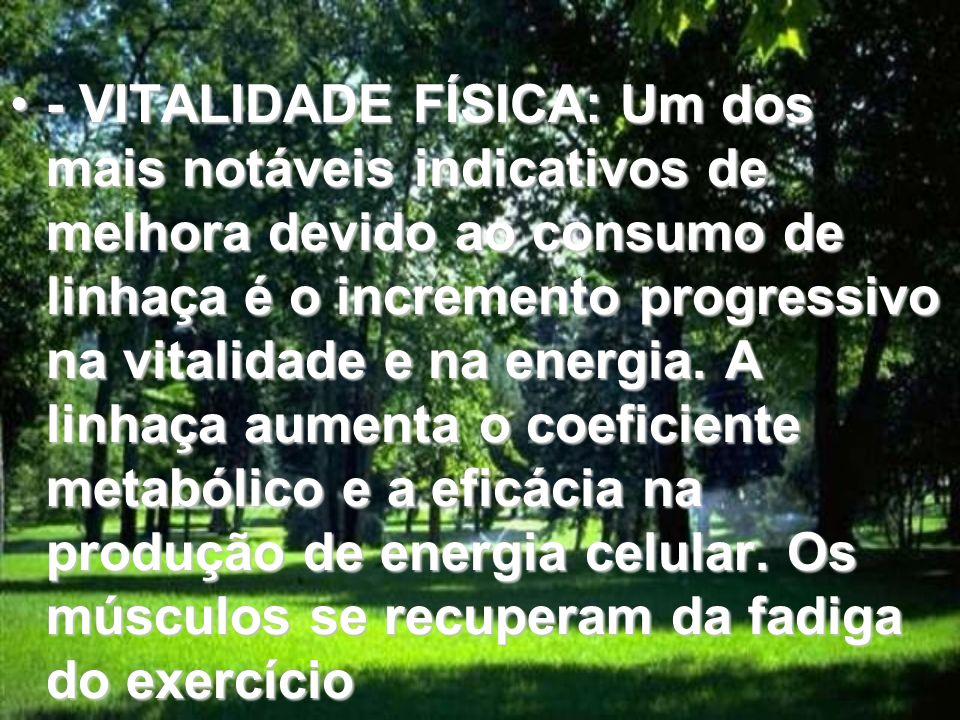 - VITALIDADE FÍSICA: Um dos mais notáveis indicativos de melhora devido ao consumo de linhaça é o incremento progressivo na vitalidade e na energia.