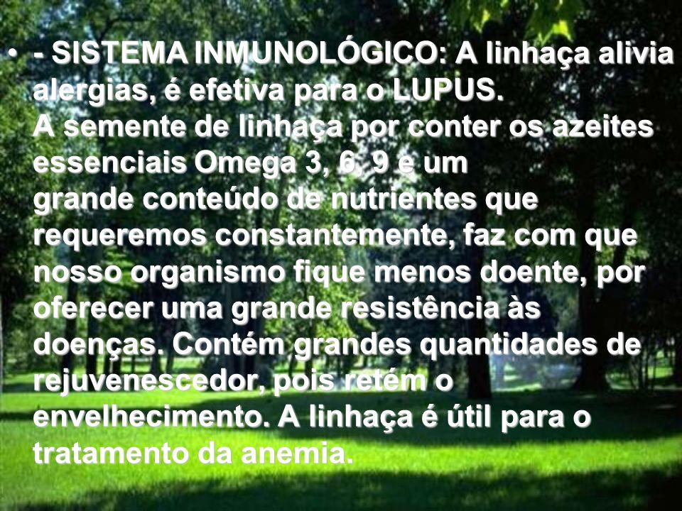 - SISTEMA INMUNOLÓGICO: A linhaça alivia alergias, é efetiva para o LUPUS.