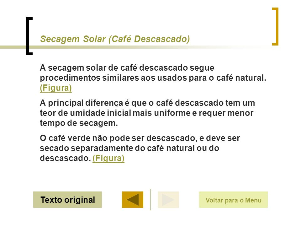 Secagem Solar (Café Descascado)