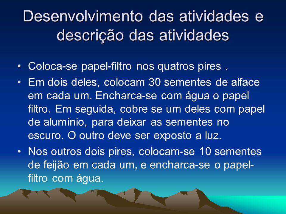 Desenvolvimento das atividades e descrição das atividades