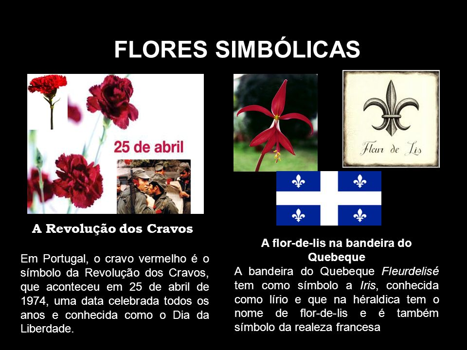 A flor-de-lis na bandeira do Quebeque