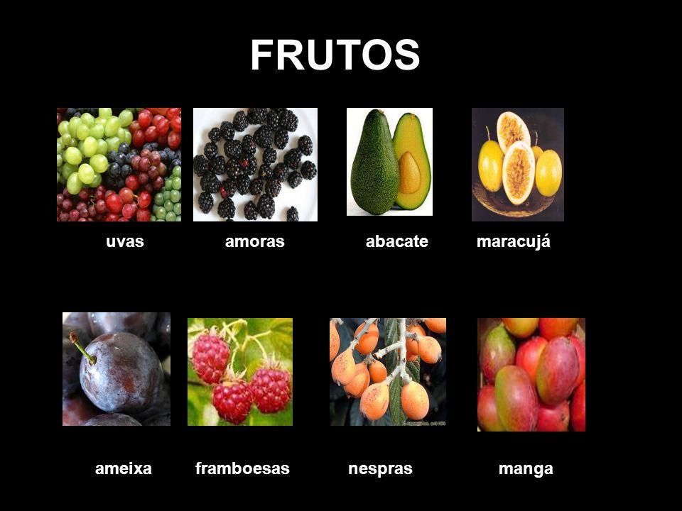 FRUTOS uvas amoras abacate maracujá.