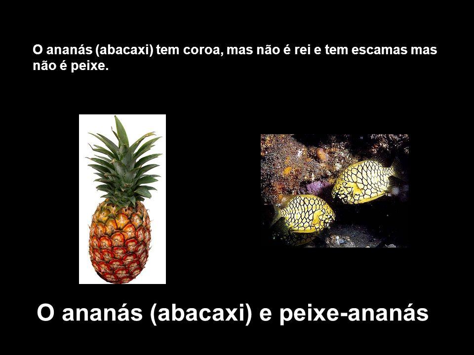 O ananás (abacaxi) e peixe-ananás