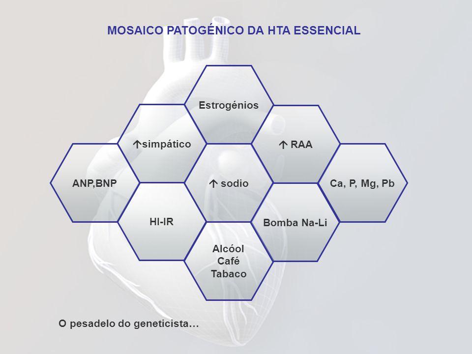 MOSAICO PATOGÉNICO DA HTA ESSENCIAL