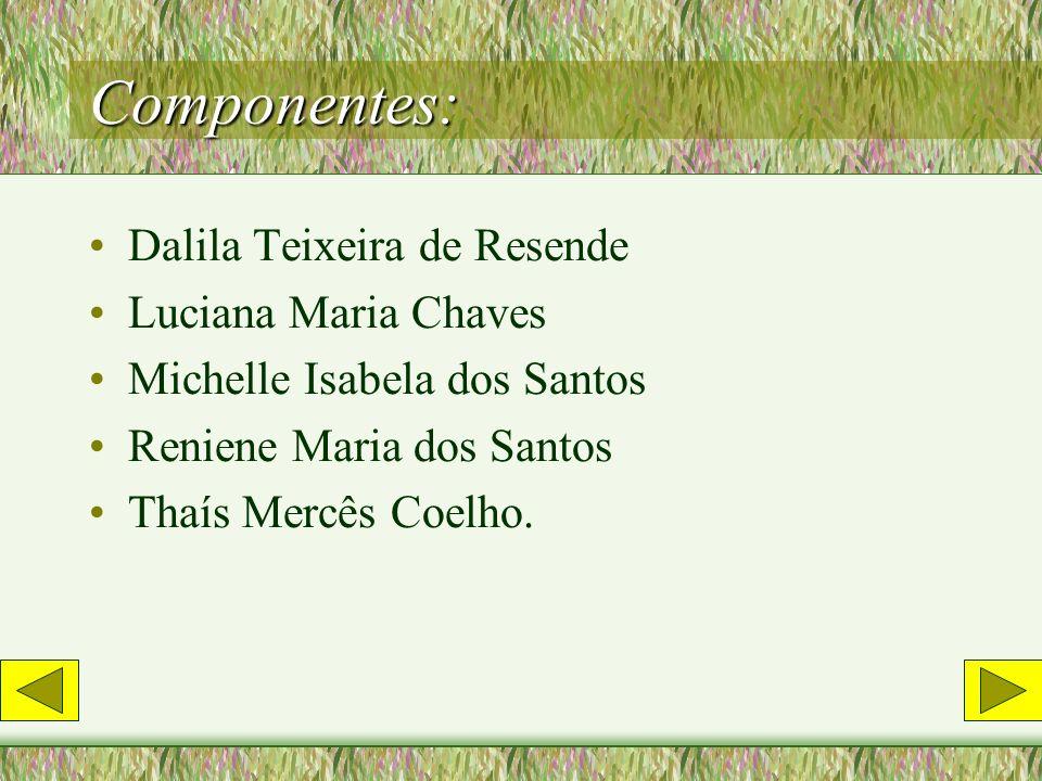 Componentes: Dalila Teixeira de Resende Luciana Maria Chaves