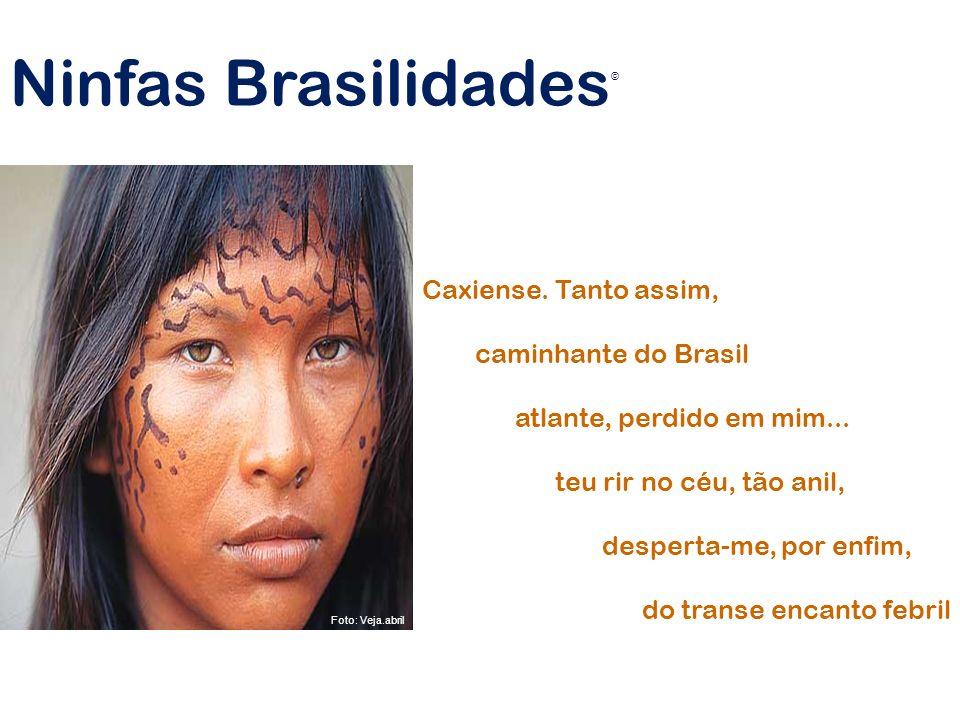 Ninfas Brasilidades Caxiense. Tanto assim, caminhante do Brasil
