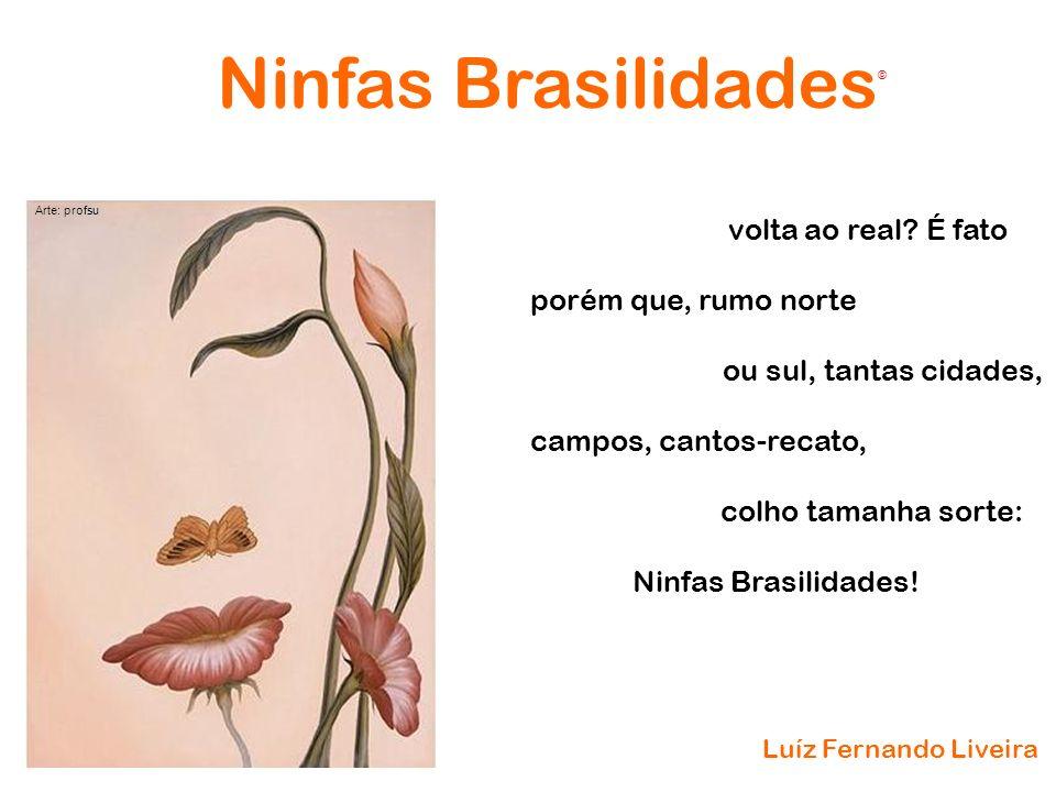 Ninfas Brasilidades volta ao real É fato porém que, rumo norte