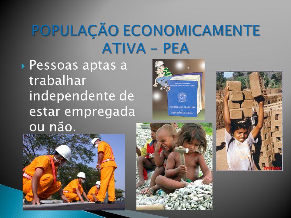 POPULAÇÃO ECONOMICAMENTE ATIVA - PEA