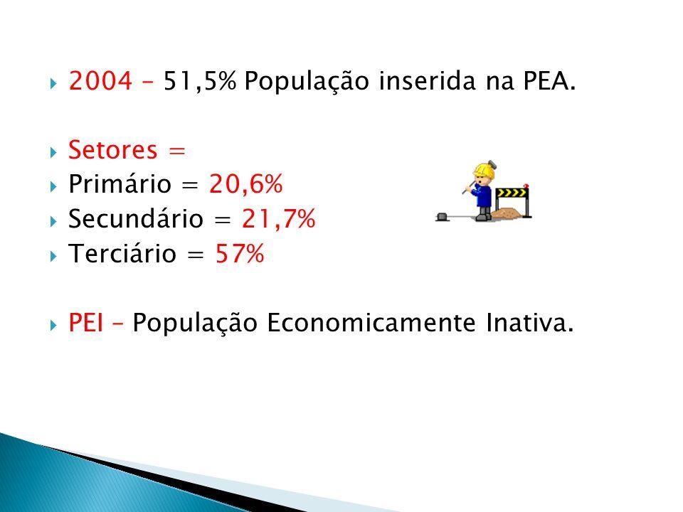 2004 – 51,5% População inserida na PEA.