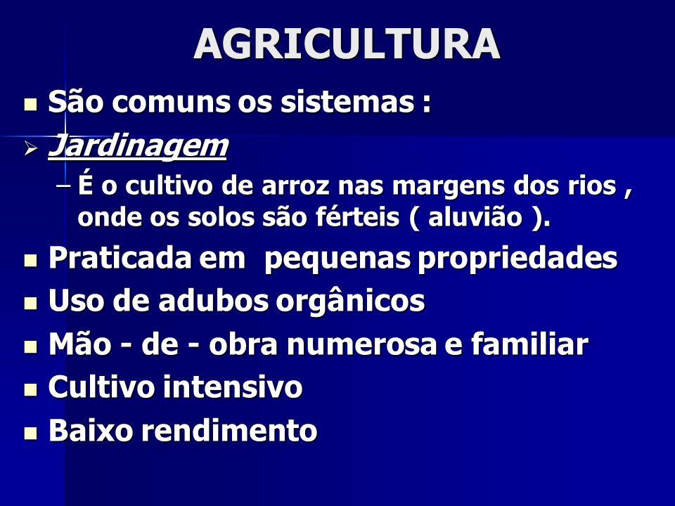 AGRICULTURA São comuns os sistemas : Jardinagem