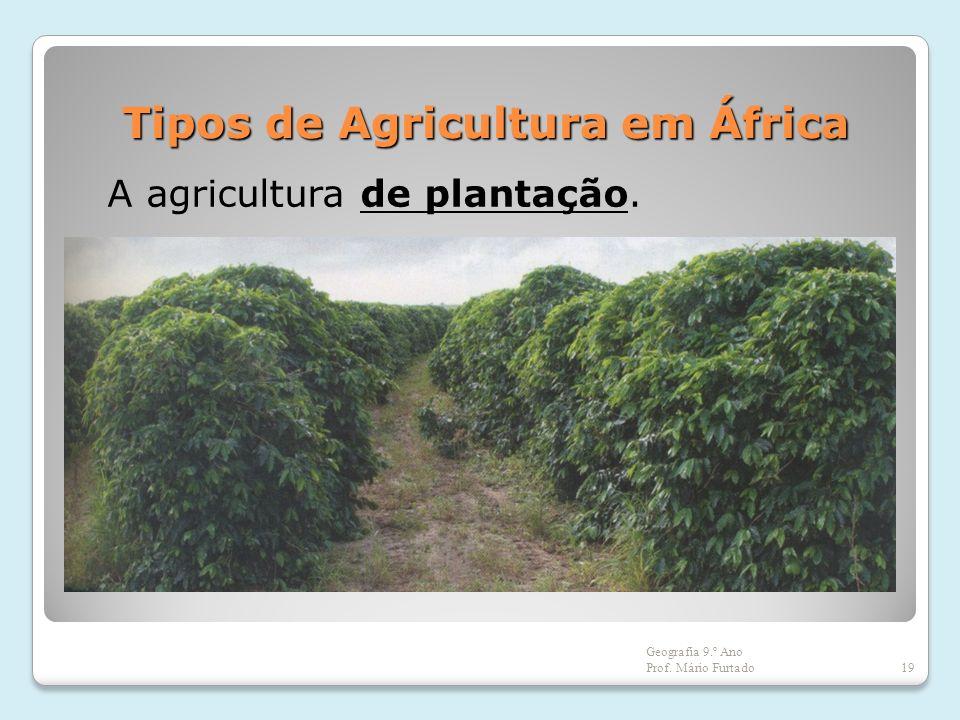 Tipos de Agricultura em África