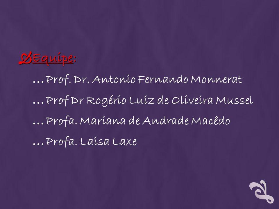 Equipe: Prof. Dr. Antonio Fernando Monnerat