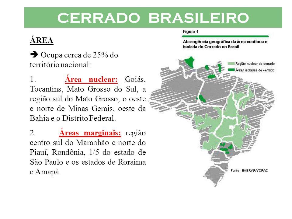 CERRADO BRASILEIRO ÁREA  Ocupa cerca de 25% do território nacional:
