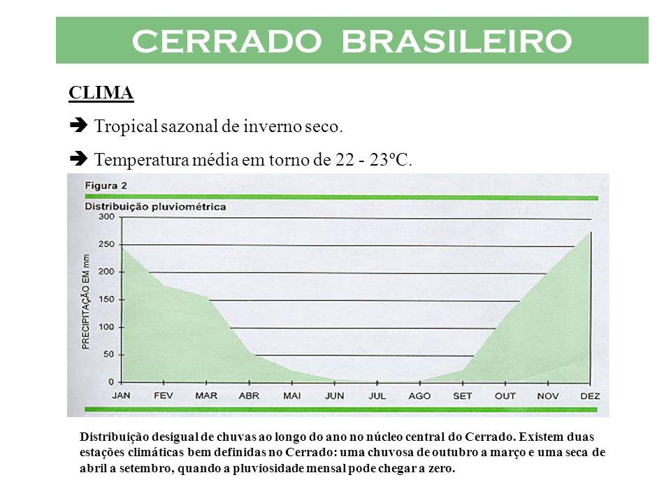 CERRADO BRASILEIRO CLIMA  Tropical sazonal de inverno seco.