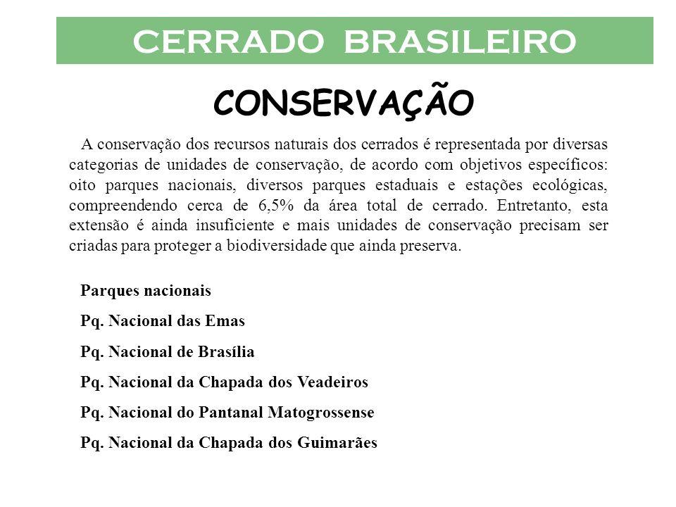 CERRADO BRASILEIRO CONSERVAÇÃO
