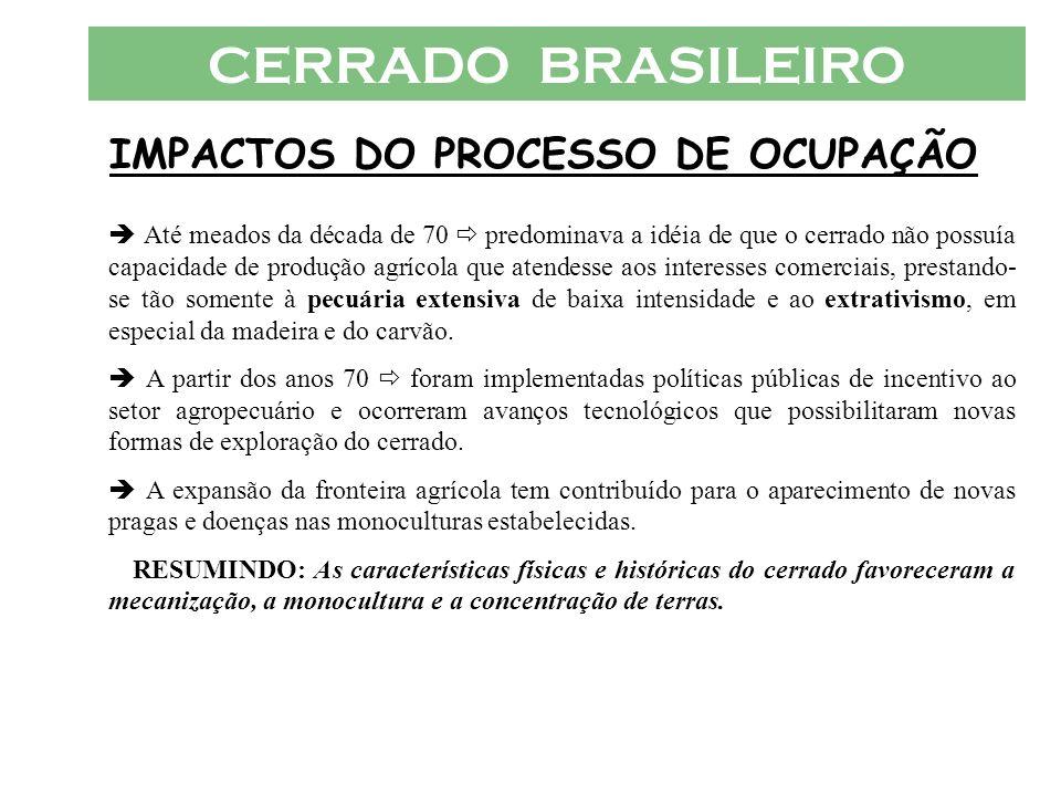 IMPACTOS DO PROCESSO DE OCUPAÇÃO