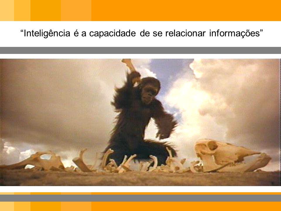 Inteligência é a capacidade de se relacionar informações