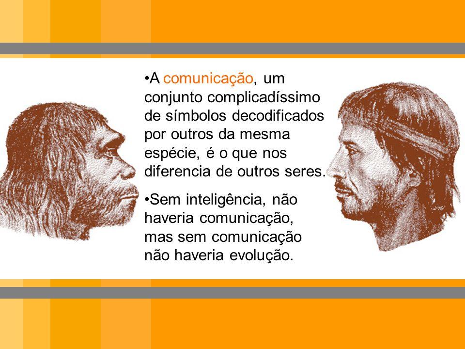 A comunicação, um conjunto complicadíssimo de símbolos decodificados por outros da mesma espécie, é o que nos diferencia de outros seres.