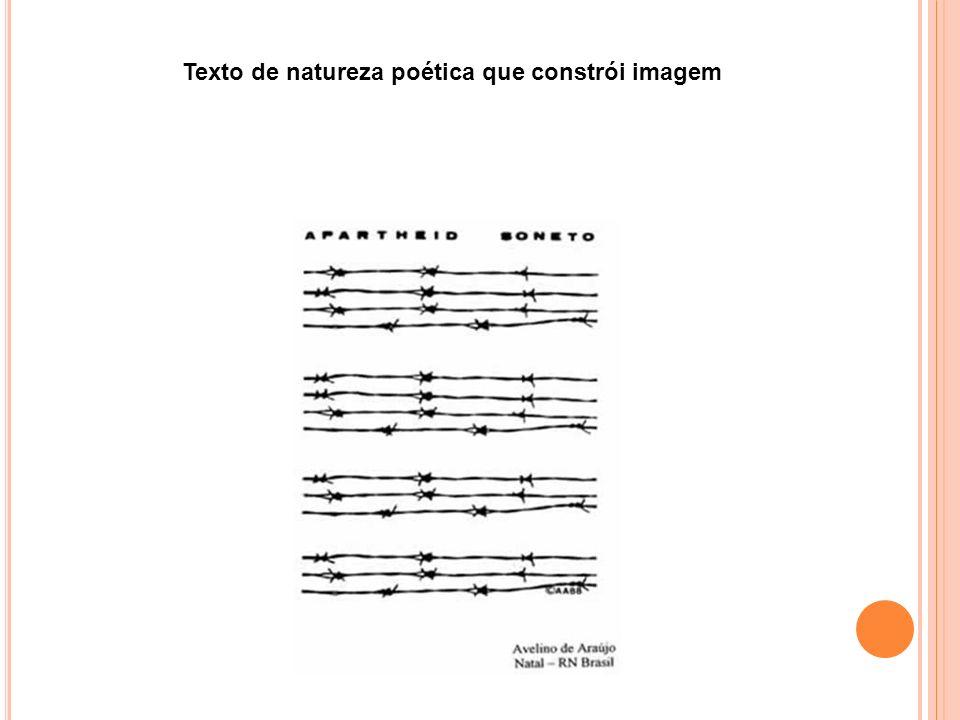 Texto de natureza poética que constrói imagem