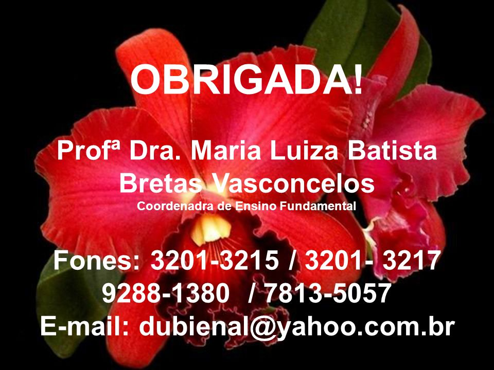 OBRIGADA! Profª Dra. Maria Luiza Batista Bretas Vasconcelos