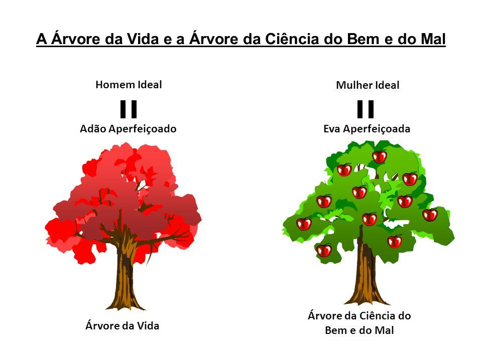 A Árvore da Vida e a Árvore da Ciência do Bem e do Mal