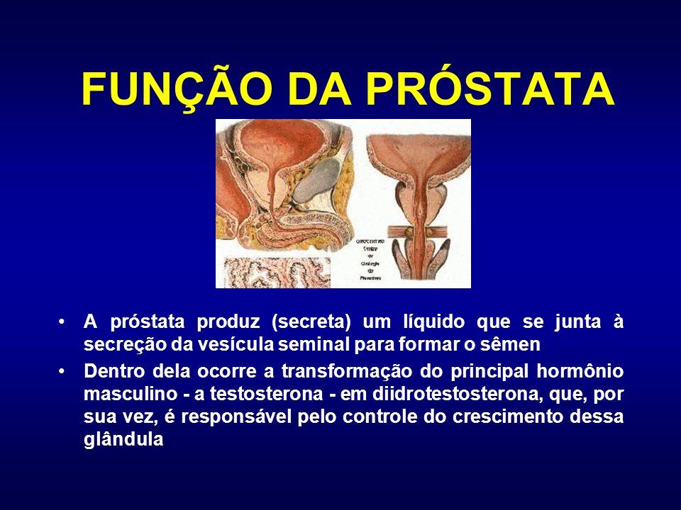FUNÇÃO DA PRÓSTATA A próstata produz (secreta) um líquido que se junta à secreção da vesícula seminal para formar o sêmen.