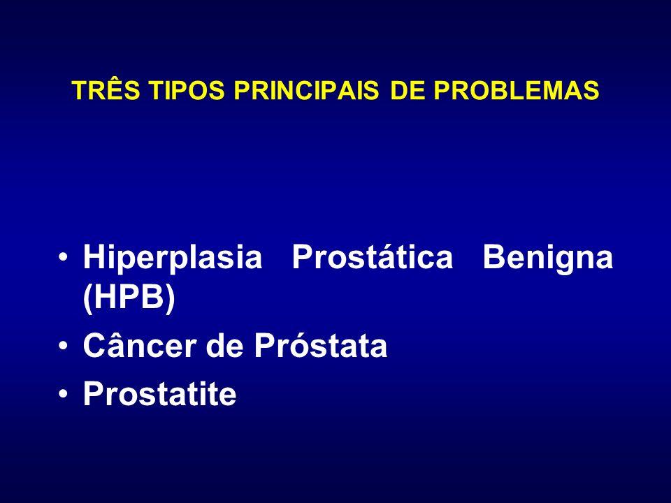 TRÊS TIPOS PRINCIPAIS DE PROBLEMAS