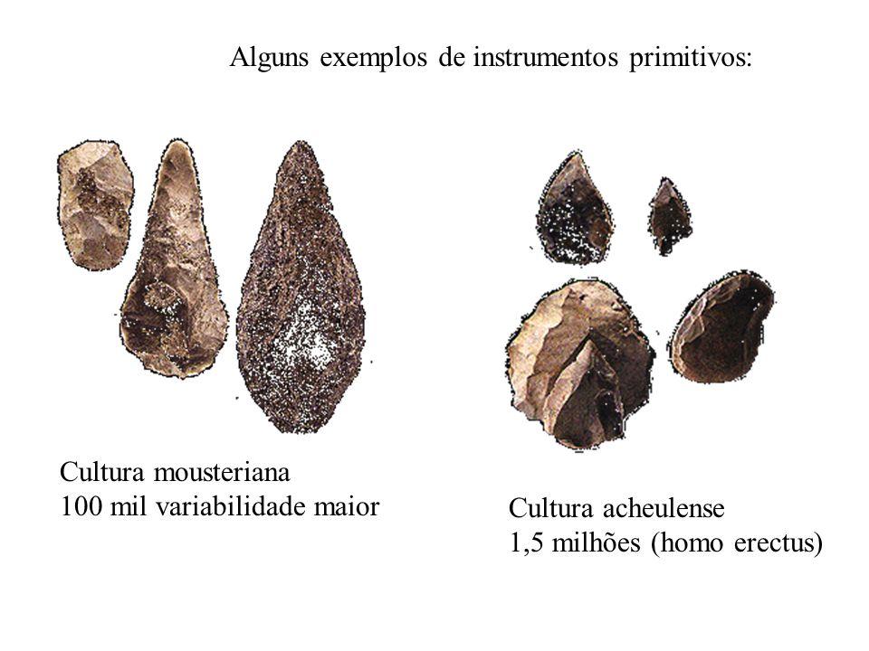 Alguns exemplos de instrumentos primitivos: