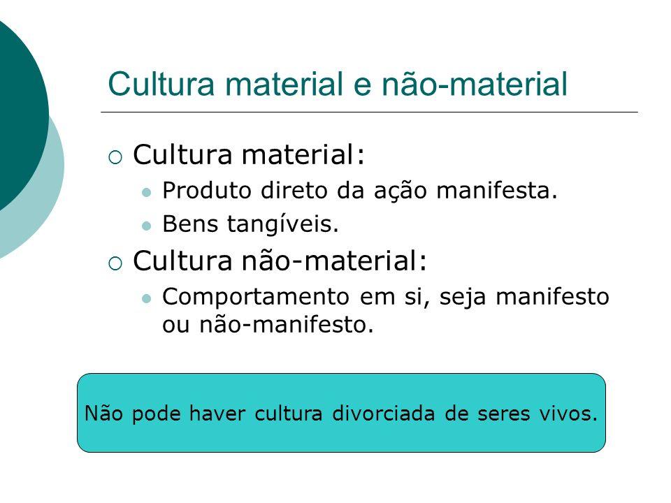 Cultura material e não-material
