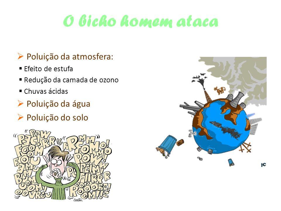 O bicho homem ataca  Poluição da atmosfera:  Poluição da água