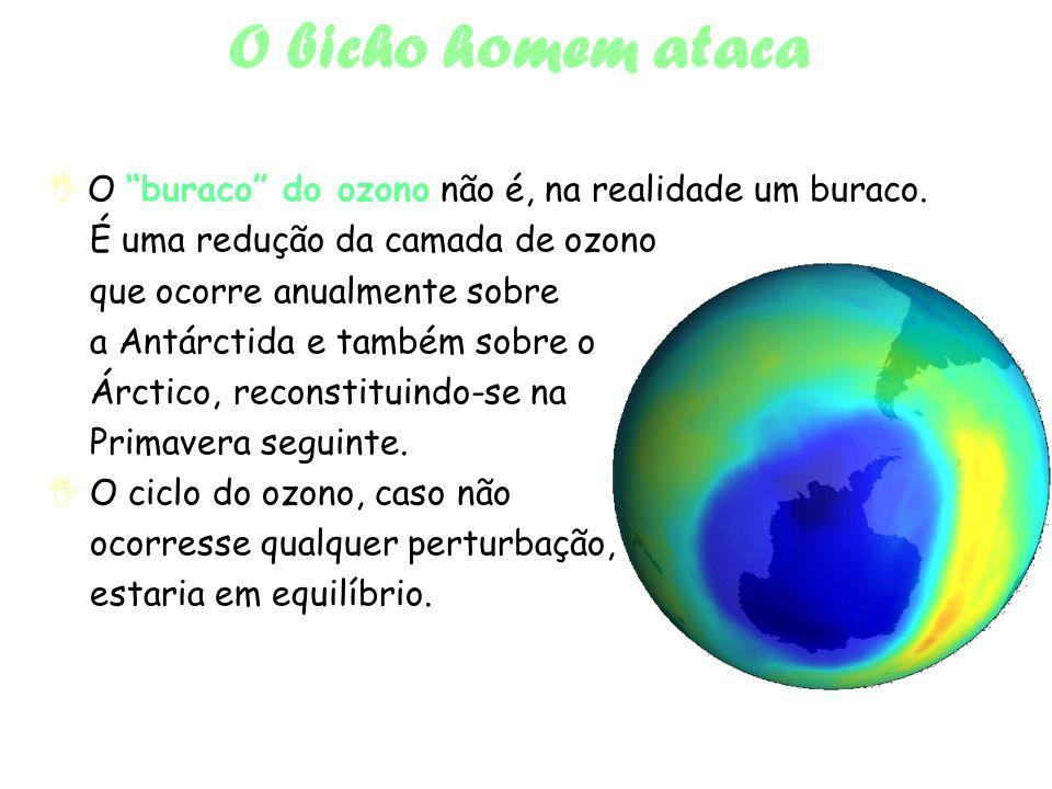 O bicho homem ataca  O buraco do ozono não é, na realidade um buraco. É uma redução da camada de ozono.