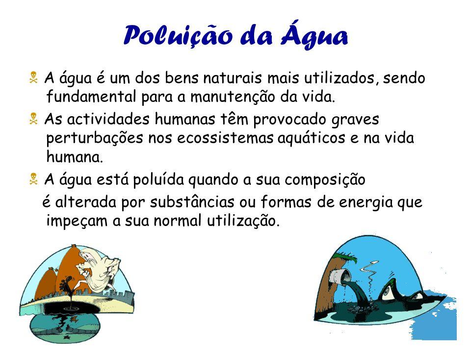Poluição da Água  A água é um dos bens naturais mais utilizados, sendo fundamental para a manutenção da vida.