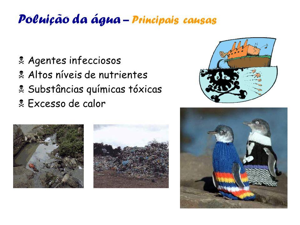 Poluição da água – Principais causas