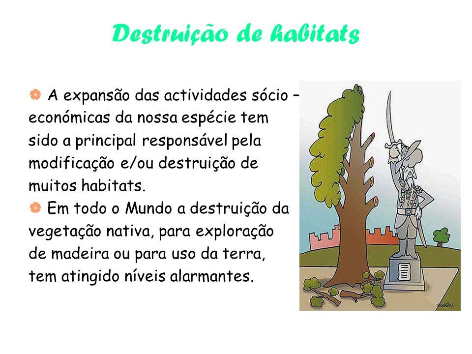 Destruição de habitats