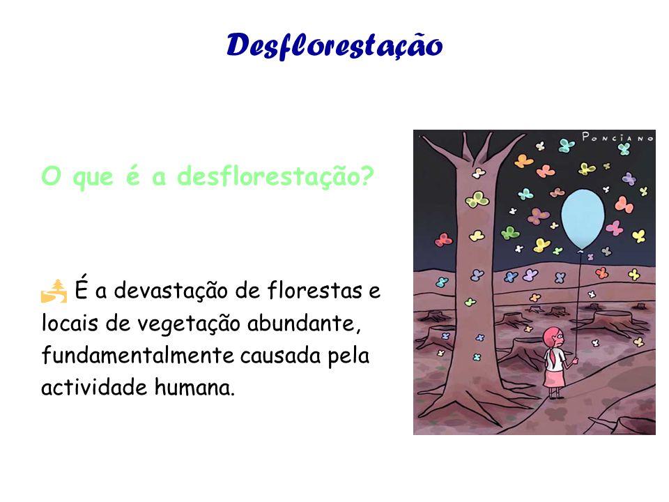 Desflorestação O que é a desflorestação