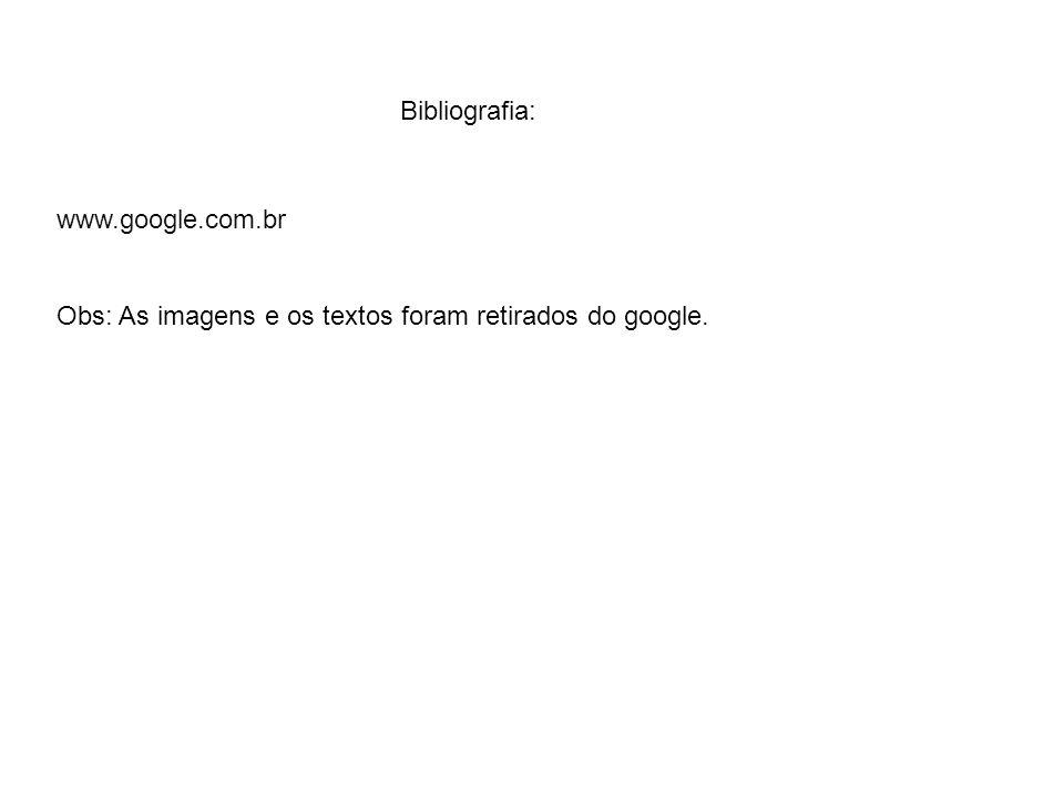 Bibliografia: www.google.com.br Obs: As imagens e os textos foram retirados do google.