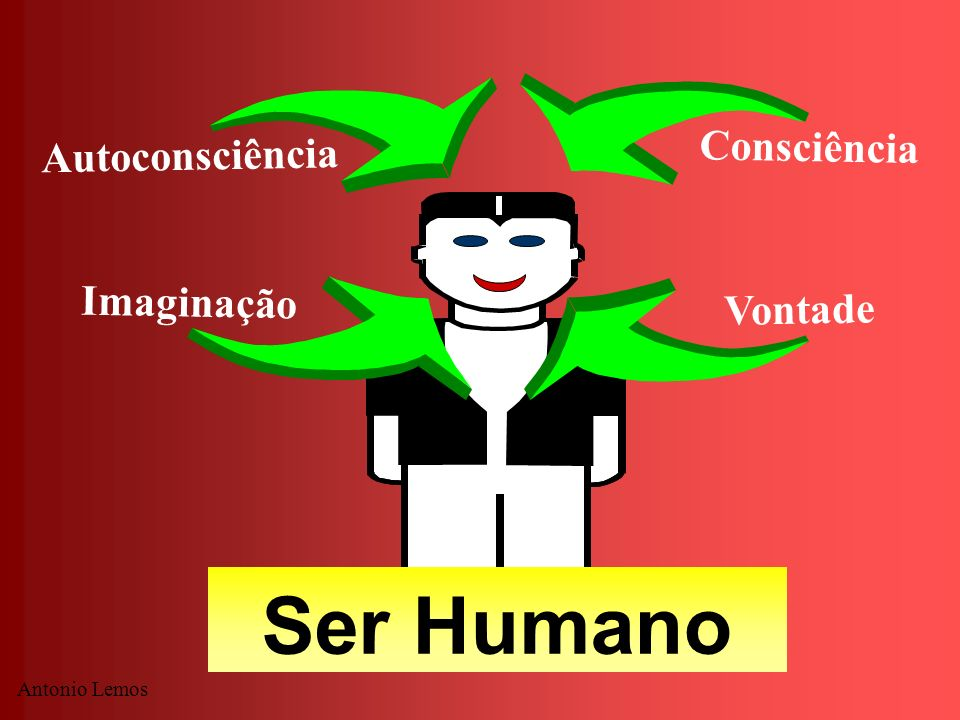 Ser Humano Consciência Autoconsciência Imaginação Vontade