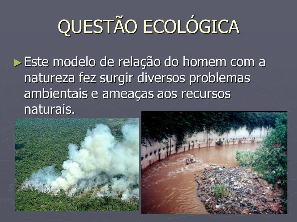 QUESTÃO ECOLÓGICA Este modelo de relação do homem com a natureza fez surgir diversos problemas ambientais e ameaças aos recursos naturais.