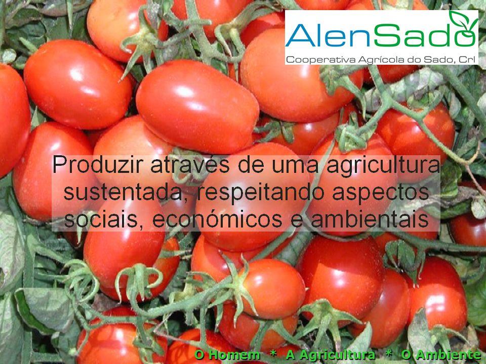 O Homem * A Agricultura * O Ambiente
