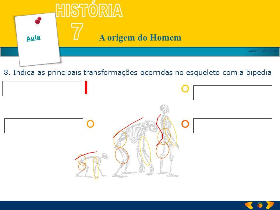 Aula 8. Indica as principais transformações ocorridas no esqueleto com a bipedia