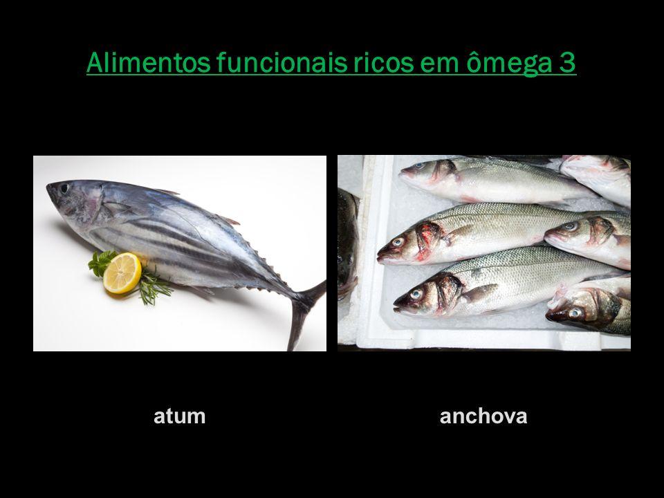 Alimentos funcionais ricos em ômega 3