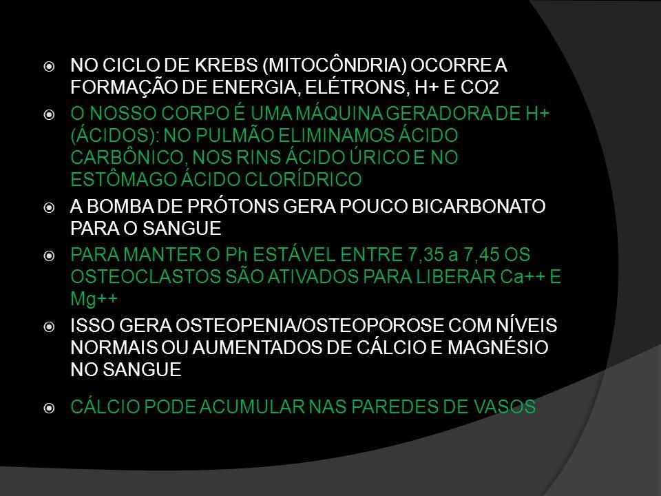 NO CICLO DE KREBS (MITOCÔNDRIA) OCORRE A FORMAÇÃO DE ENERGIA, ELÉTRONS, H+ E CO2