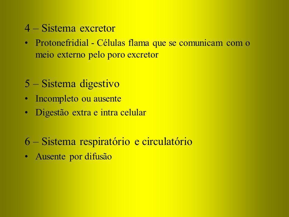 6 – Sistema respiratório e circulatório