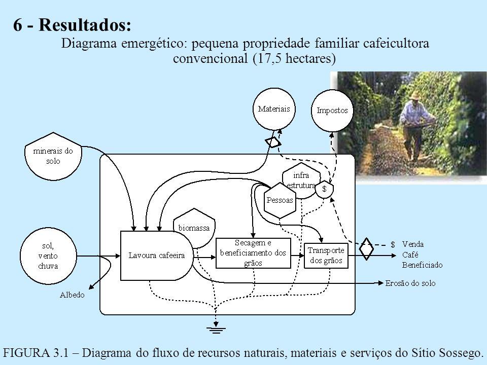 6 - Resultados: Diagrama emergético: pequena propriedade familiar cafeicultora convencional (17,5 hectares)