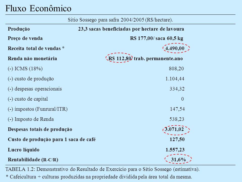 Sitio Sossego para safra 2004/2005 (R$/hectare).