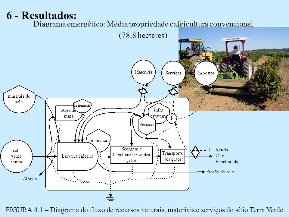 Diagrama emergético: Média propriedade cafeicultura convencional