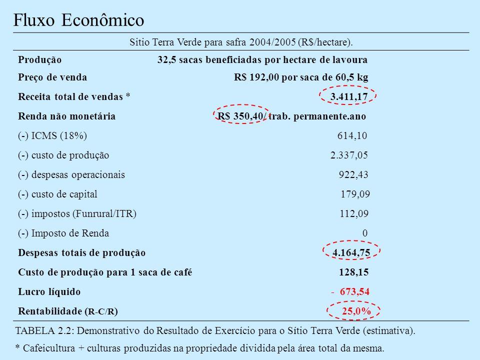 Sitio Terra Verde para safra 2004/2005 (R$/hectare).